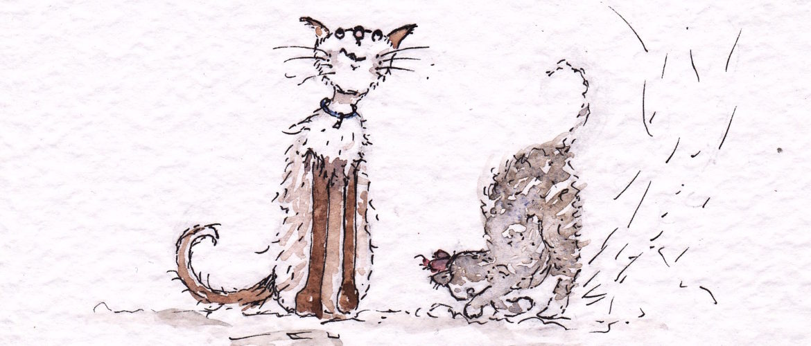 watercolour drawing of 2 cats playing in the snow